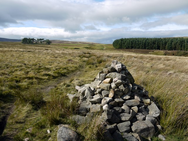 Cairn marking St Cuthbert's Way footpath