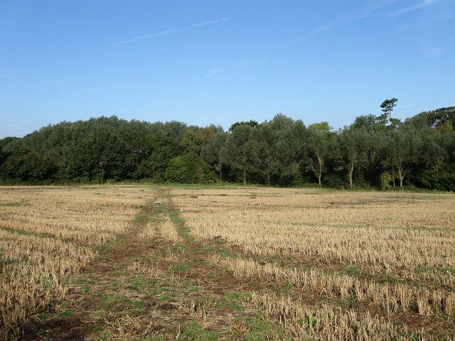 Hoppers Field