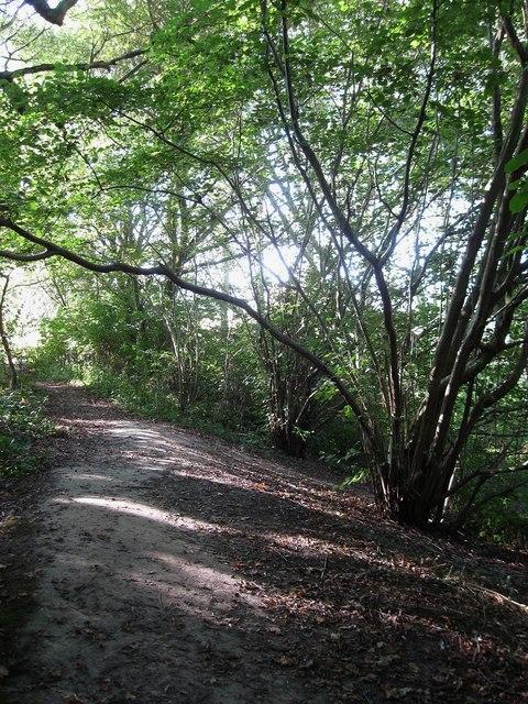 Streat-Plumpton Parish Boundary