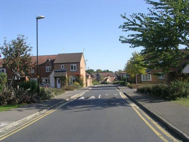 Sycamore Drive - Prospect Road