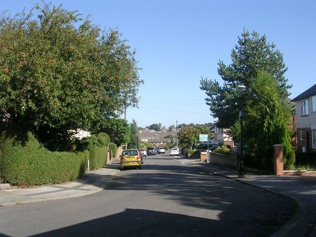 Kingsley Park Road - Kingsley Road