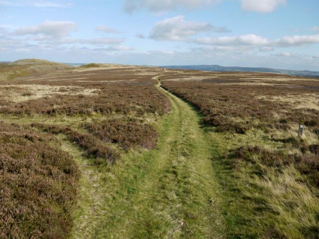 Junction of paths south-east of Gains Law