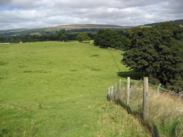 On Hewcroft Hill