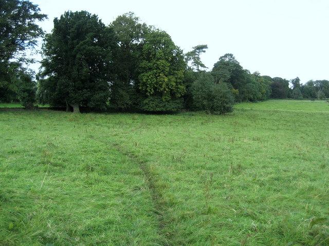 Teesdale Way approaching Sennings Lane