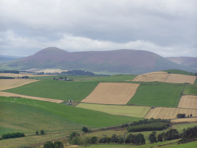Tap o'Noth from Dunnideer