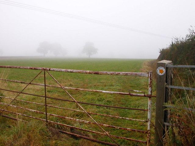 Bourton-Popehill Spinneys