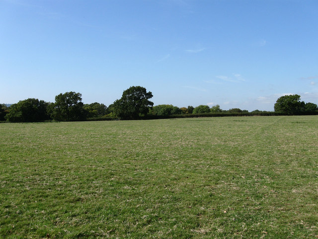 Brook Field, Plumpton