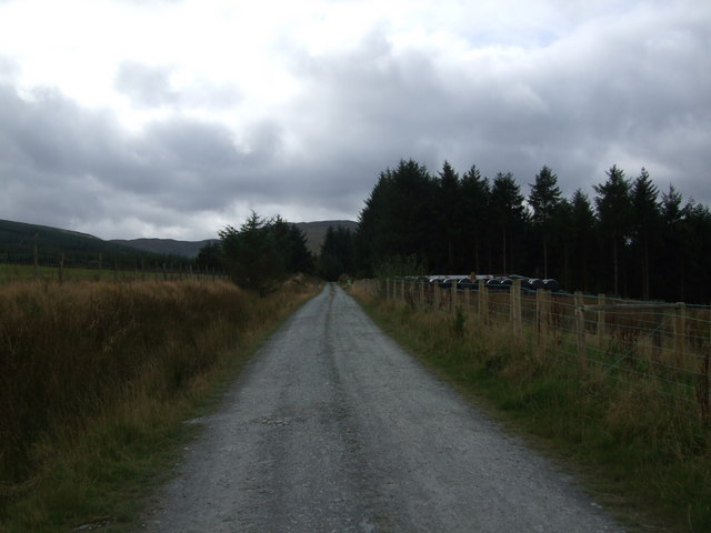 Track to forest at Penmachno