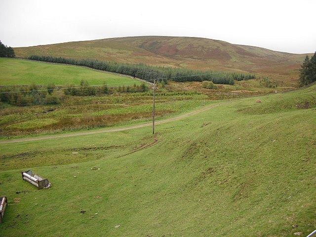 Field, Baddinsgill