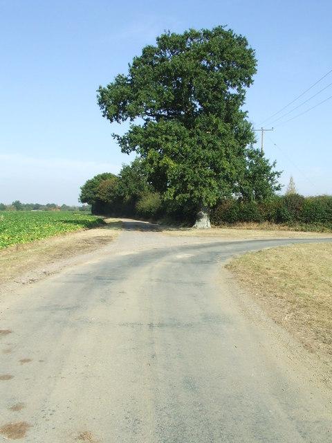 Hundred Lane