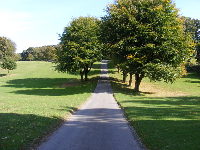 Track through Sewerby Hall Park