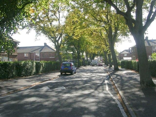 St Andrew's Avenue - St Andrew's Crescent