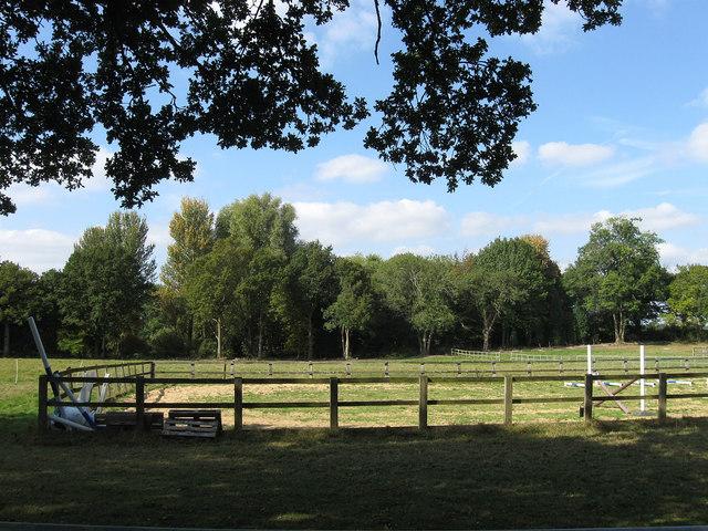 Bars Field