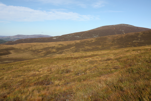 Moorland, Fionna Choire