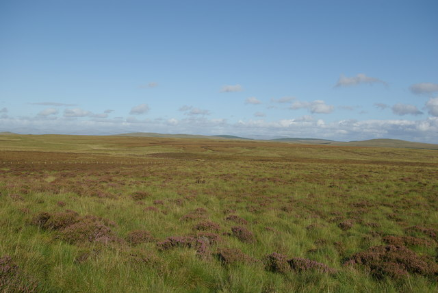 Heather moorland south of Mid Hill