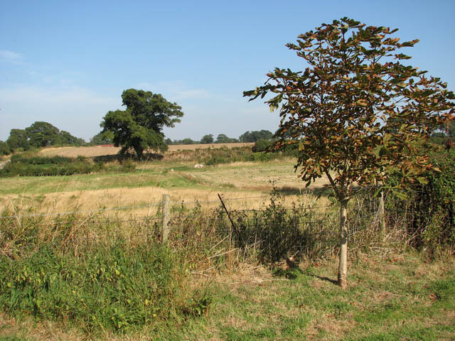 Ashby - the site of the deserted village