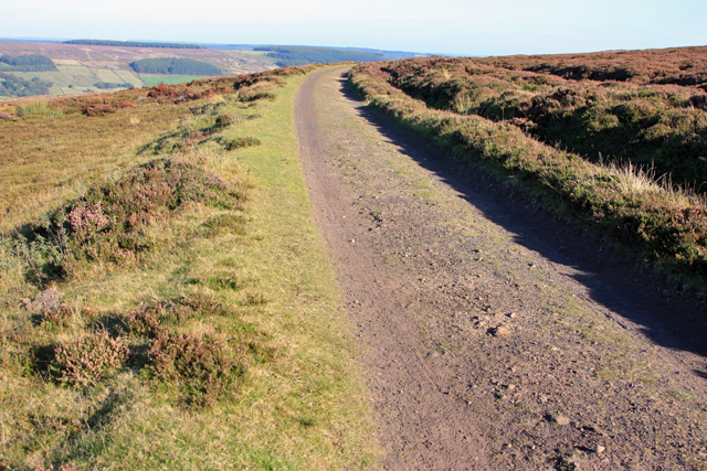 Track of the disused railway line above Rosedale