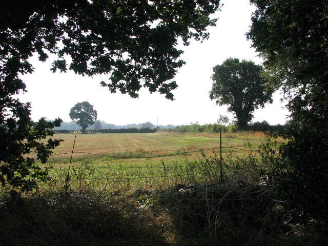 Field adjoining St Mary's church in the south