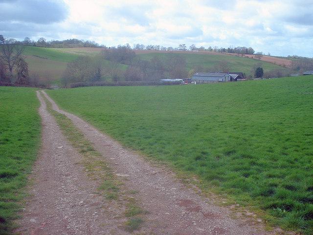 Track to Uphampton Farm