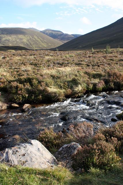 River Nethy