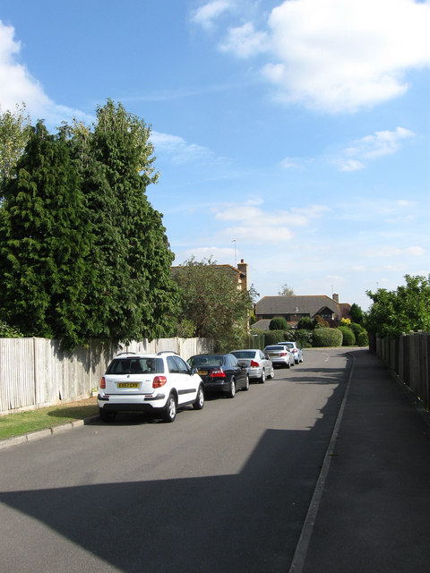 Woodgate Meadow
