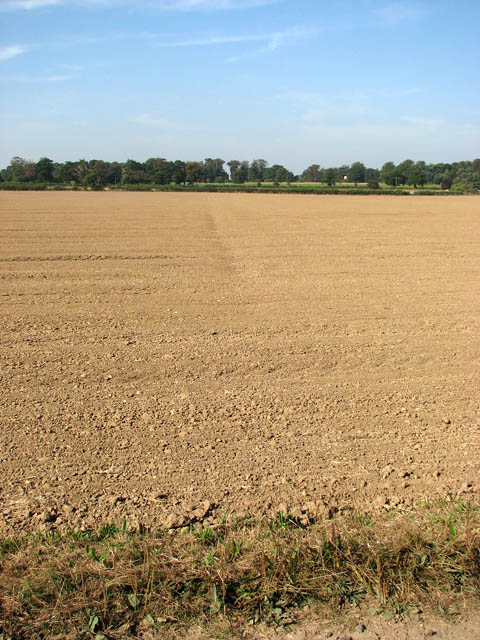 A newly drilled field in late September