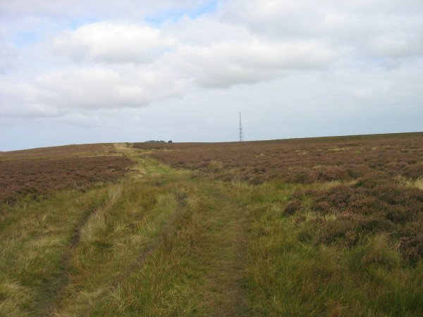 Bridleway over Quarryhouse Moor