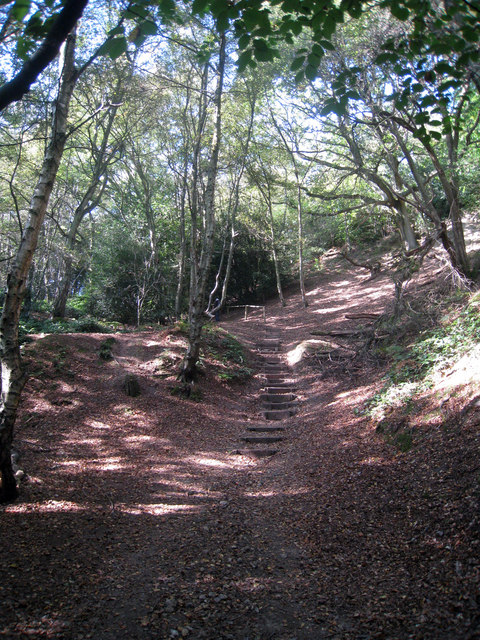 Steps to Leith Hill