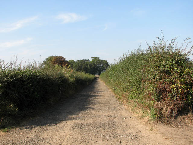To Market Lane on the Angles Way