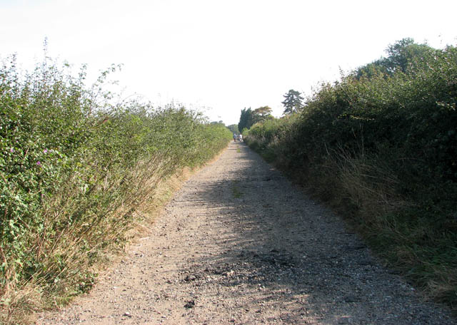 Track to Kitty's Farm