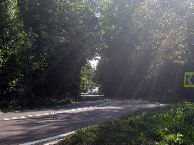 Beare Green Road