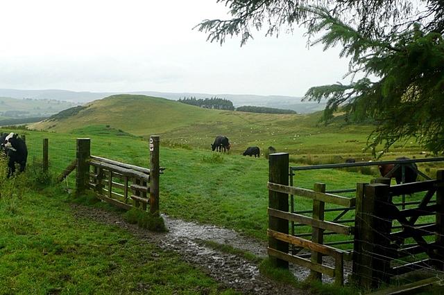 Towards Fawdon
