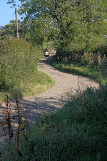 Track to Bank Lane