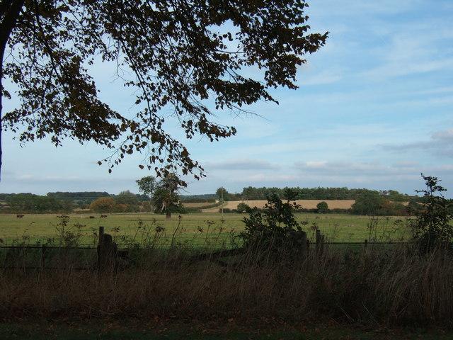Across the fields at West Newton near Sandringham