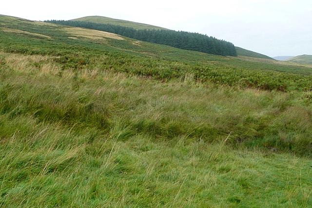 Towards Old Fawdon Hill