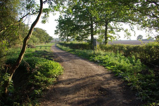 Track to Ufton