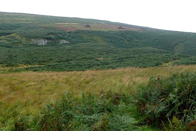 Moorland southeast of Cochrane Pike