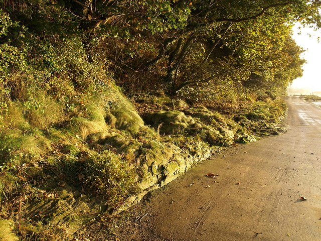 Rocky roadside by the Avon estuary
