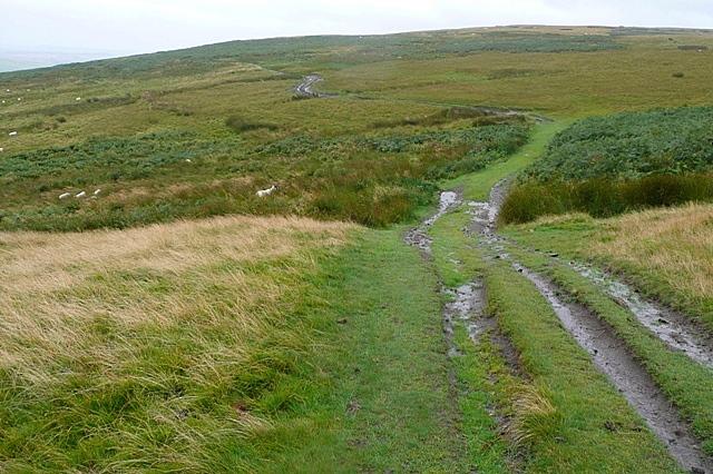 Ingram to Prendwick track