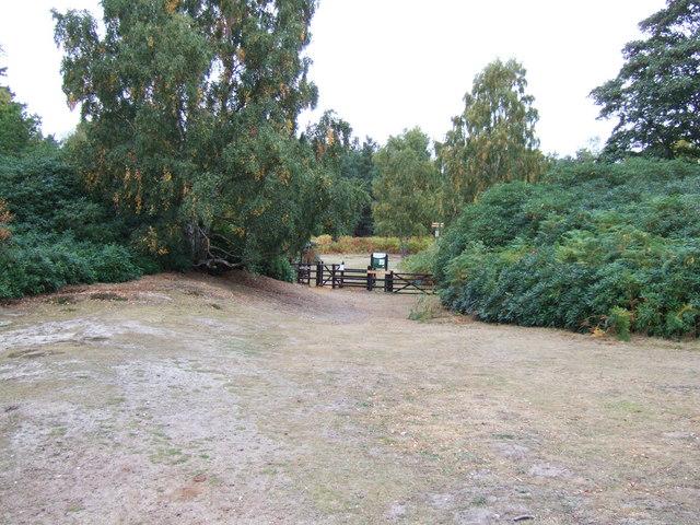 Entrance to the bog