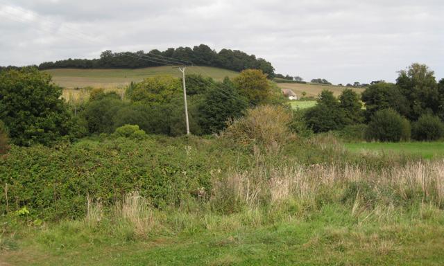 Field corner by Shutterton Lane