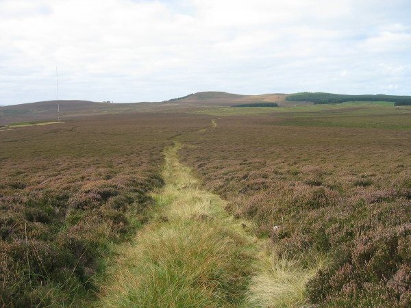 Bridleway from Cateran Hill