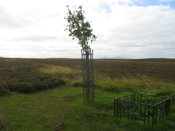 Memorial to Douglas Brown aged 28