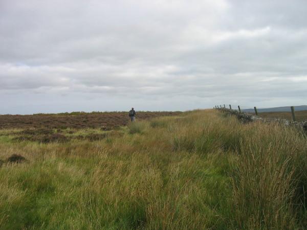Moorland near Hare Crag
