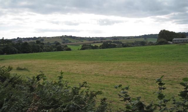 Field below Langdon Hospital