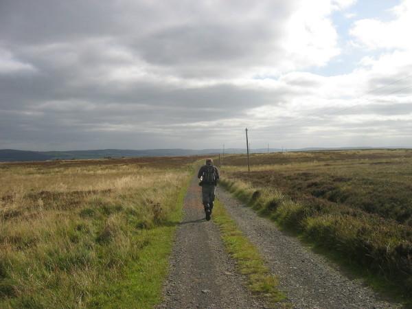 Track to Eglingham