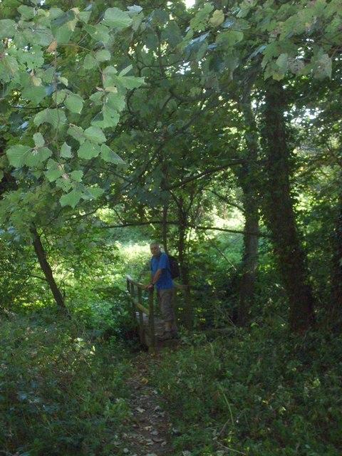 Crossing Sneyd's Brook