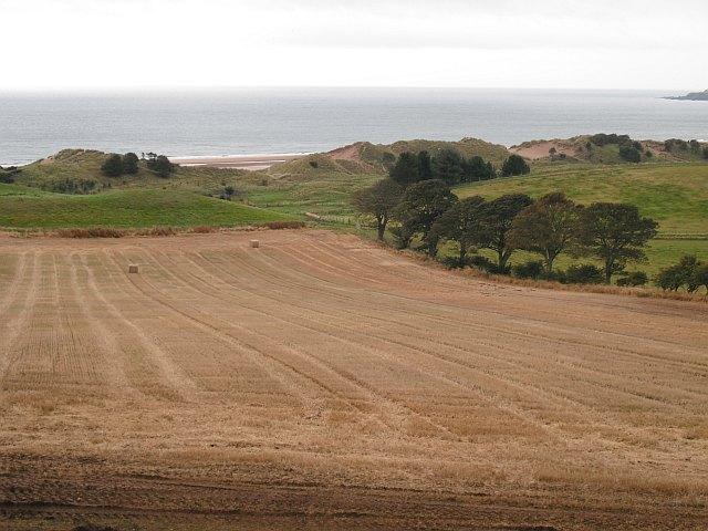 Stubble field, Lunan