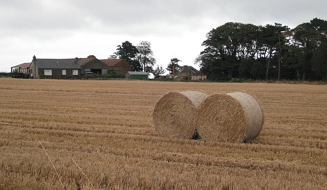 Round bales, Nether Dysart