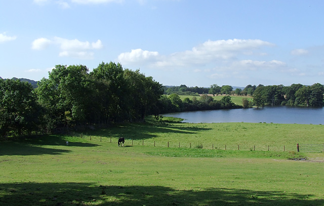 Pasture and lake near Llanddewi-Brefi, Ceredigion